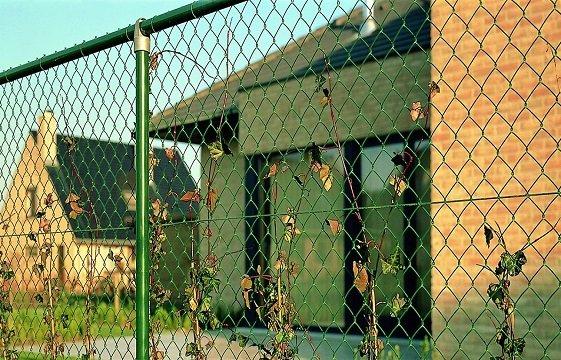 забор из рабицы киев